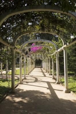 Carta da parati Bella Arco Pergola Infinite Percorso nel giardino botanico, Rio de Janeiro, Brasile
