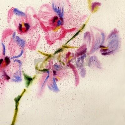 Carta da parati Bella orchidea acquerello
