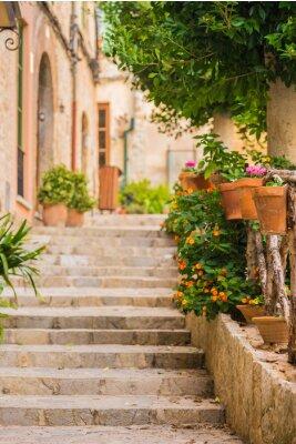 Carta da parati Bella scala in pietra con decorazioni in vaso
