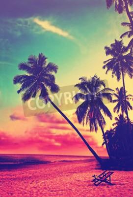 Carta da parati Bella spiaggia tropicale con sagome di palme al tramonto