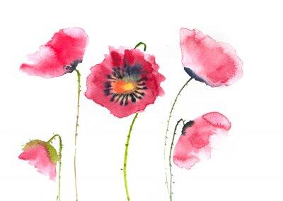 Carta da parati Bellissimi fiori di papavero rosso, pittura ad acquerello
