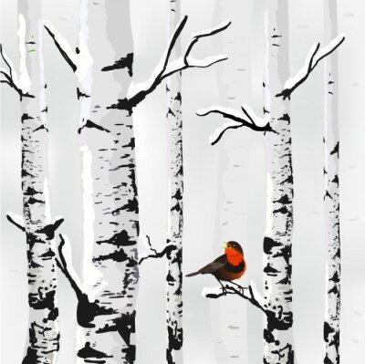 Carta da parati Betulla nella neve, inverno carta in formato vettoriale