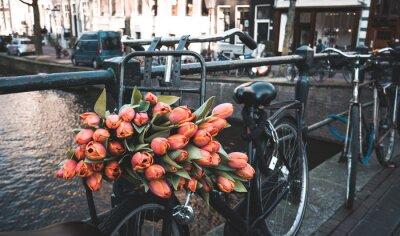 Carta da parati Bici con tulipani
