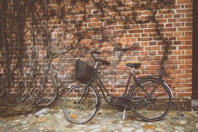 Carta da parati Bicicletta dell'annata appoggiato al muro
