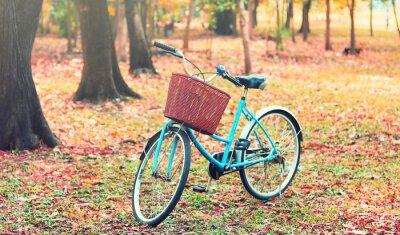 Carta da parati Bike per viaggi di piacere. (Focus a basket) nel tono retrò vintage