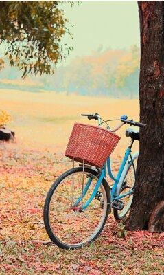 Carta da parati Bike per viaggi di piacere. (Messa a fuoco a basket) tono retrò vintage