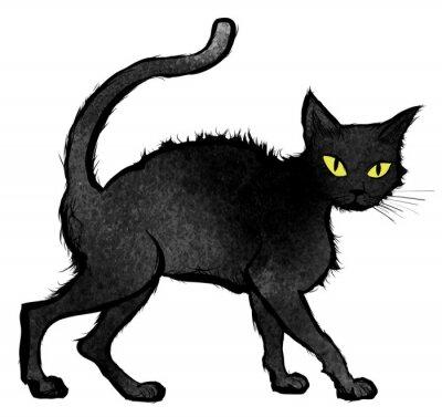 Carta da parati Black Cat a piedi e guardando la telecamera