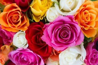 Carta da parati bouquet di rose fresche