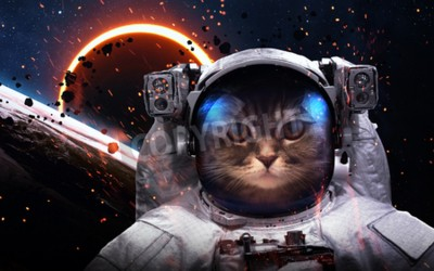 Carta da parati Brave cat astronaut at the spacewalk. This image elements furnished by NASA