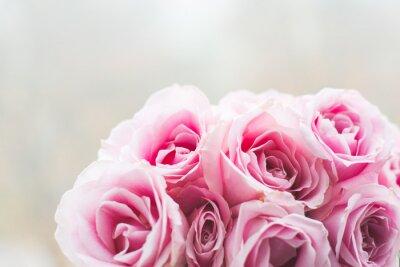 Carta da parati Brillante rosa rose sfondo
