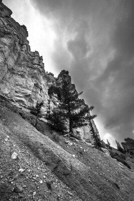 Carta da parati Bryce Canyon bianco e nero Fotografie