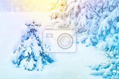 Foto Con La Neve Di Natale.Buon Natale E Felice Anno Nuovo Biglietto Di Auguri Sfondo Paesaggio Carta Da Parati Carte Da Parati Il Paesaggio Beatiful Brina Myloview It