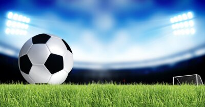 Carta da parati Calcio Sport