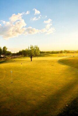 Carta da parati campi da golf