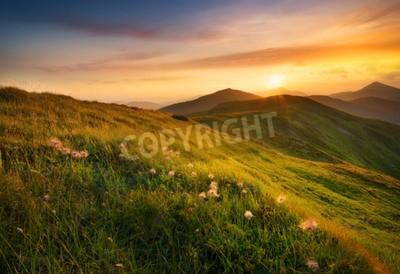 Carta da parati campo di montagna durante il tramonto. Bellissimo paesaggio naturale