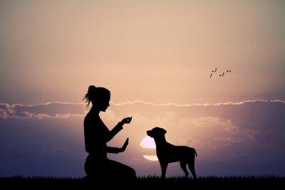 Carta da parati cane addestrato al tramonto