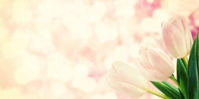 Carta da parati Cartolina d'epoca con tulipano