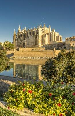 Carta da parati cattedrale Maiorca