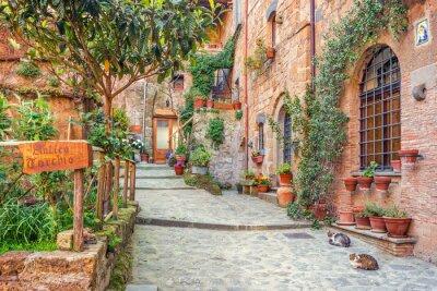 Carta da parati Centro storico Toscana Italia