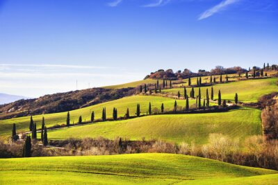 Carta da parati cipressi strada panoramica. Siena, Toscana, Italia.