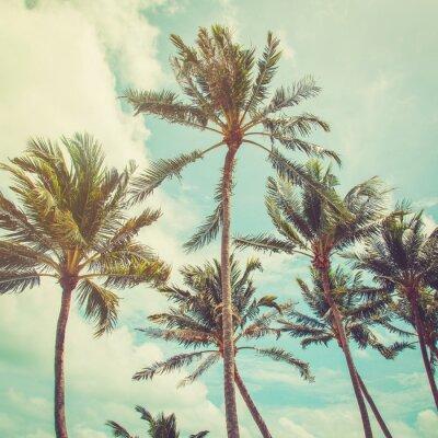 Carta da parati coconut palm tree and blue sky clouds with vintage tone.