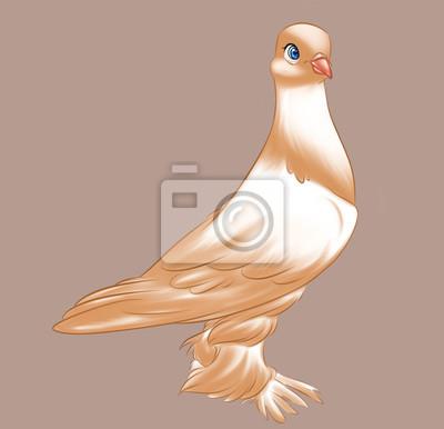 Carta Da Parati Colomba Di Razza Marrone Uccello Cartoon Carattere Animale Illustrazione