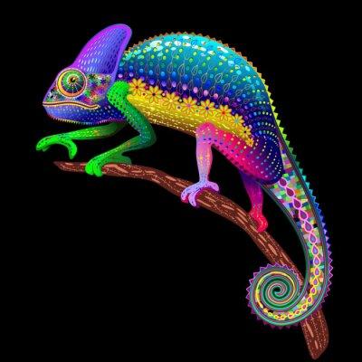 Carta da parati Colori Chameleon Fantasy Arcobaleno