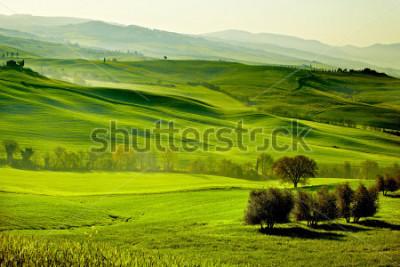 Carta da parati Countryside, San Quirico d`Orcia , Tuscany, Italy
