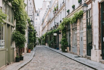 Carta da parati Cozy street in Paris, France