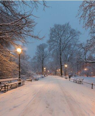 Carta da parati Cracovia, in Polonia, vicolo nel parco Planty visto al mattino durante la neve.