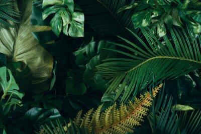Carta da parati Creative layout made of tropical leaves. Flat lay. Nature concept.