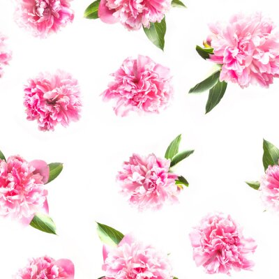 Carta da parati Creative seamless pattern of pink peony flower on white. Minimal flat lay. Top view.