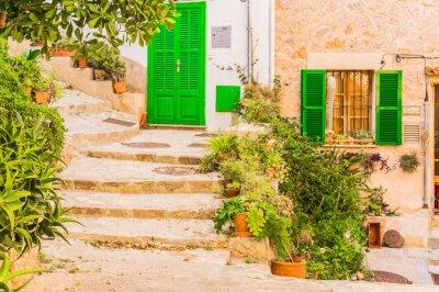 Carta da parati decorazione tipica pianta in un vecchio villaggio rustico Mediterraneo