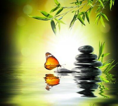 Carta da parati esclusivo concetto delicato - farfalla su acqua in giardino