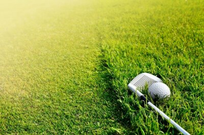 Carta da parati Facciamo Golf