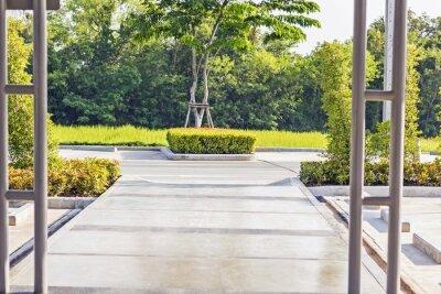 Carta da parati Facendo un passo concreto percorso in una tranquilla Green Garden