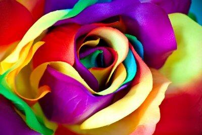 Carta da parati falso fiore di rosa