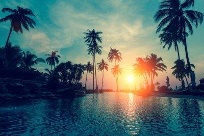 Carta da parati Fantastico tramonto, palme in spiaggia tropicale.