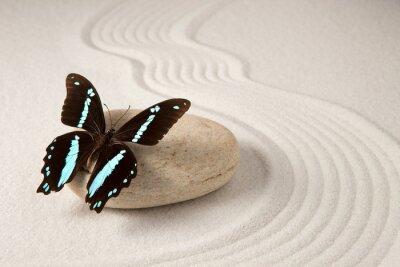 Carta da parati farfalla Zen