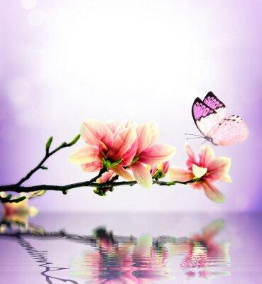 Carta da parati Farfalle e fiori di magnolia