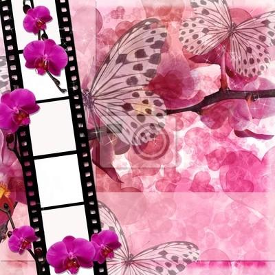 Farfalle E Orchidee Fiori Rosa Sfondo Con Pellicola Fram Carta Da