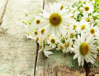Carta da parati fiori di camomilla freschi bouquet sullo sfondo del legno
