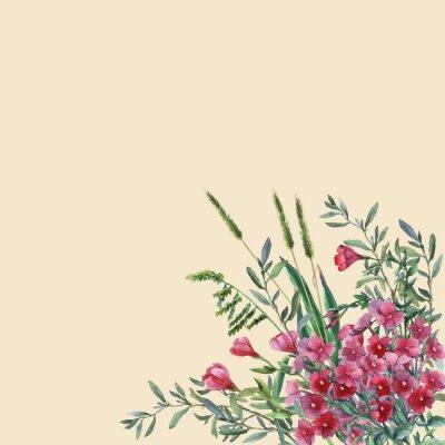 Fiori 80 Prato.Fiori Di Primavera Colorata Ed Erba Su Un Prato Acquerello