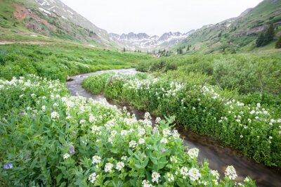 Carta da parati fiori e di montagna