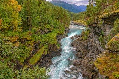 Carta da parati fiume di montagna selvaggia tra ripide scogliere