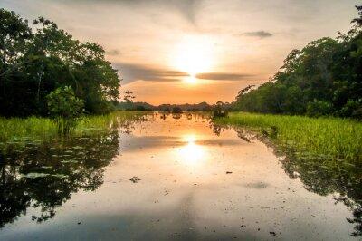 Carta da parati Fiume nella foresta amazzonica al crepuscolo, Perù, Sud America