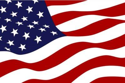 Carta da parati Flag of America
