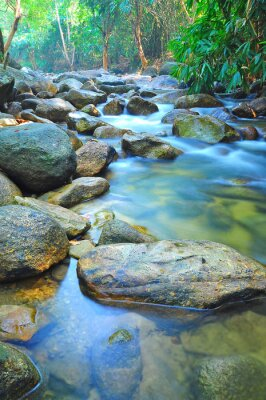 Carta da parati Flusso d'acqua attraverso rocce in un ruscello poco profondo in Malesia Jungle