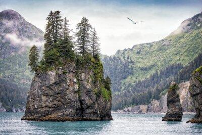 Carta da parati Foggy Day, Parco nazionale di Kenai Fjords, Alaska, Stati Uniti d'America