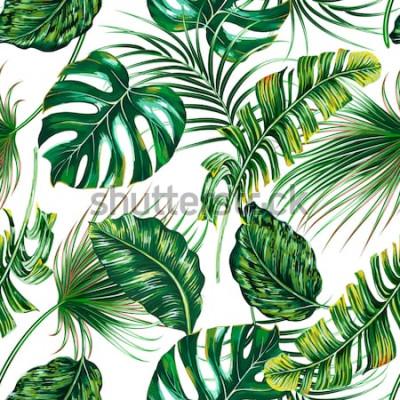 Carta da parati Foglie di palma tropicali, monstera, fondo senza cuciture del modello di estate floreale di vettore della foglia della giungla